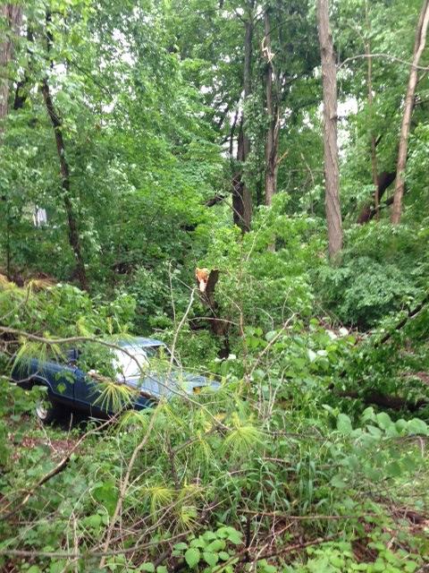 New Milford damage / Courtesy: Chris Bialack