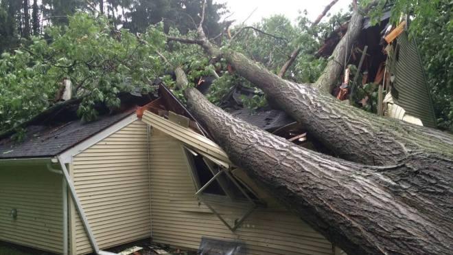 Damage in Wallingford